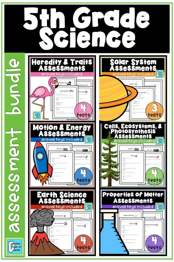 5th Grade Science Assessment Bundle | 5th grade science ...