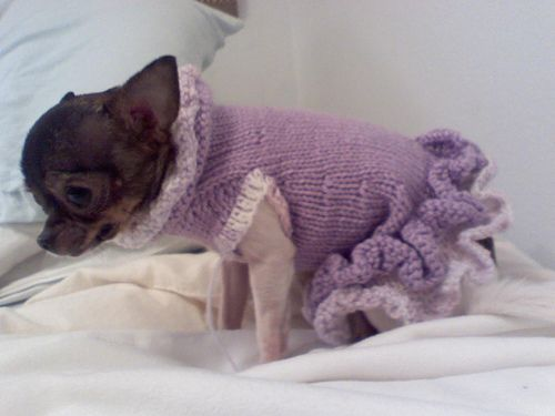 Free Pattern For The A Line Ruffled Dog Sweater Dress Crochet