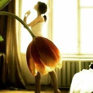 """""""E que eu Florença, seja lá como flor"""" - Juliana Nishiyama em Coisas que eu sei."""