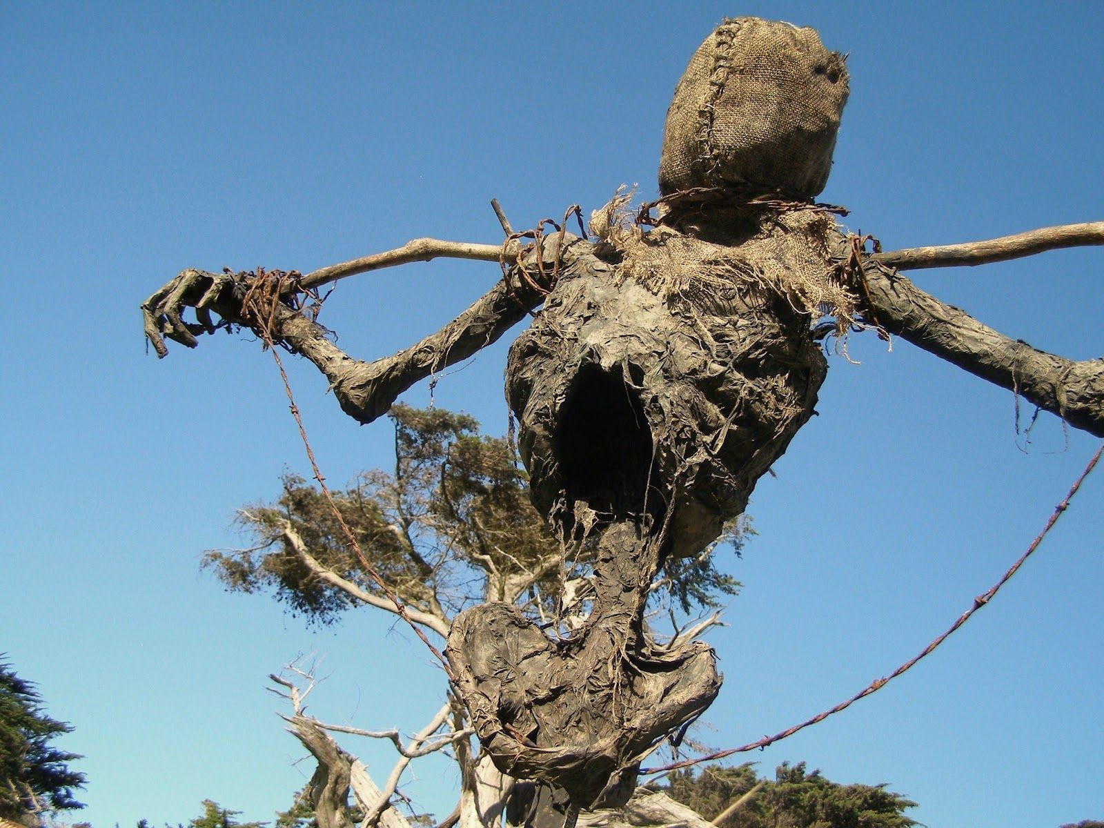 the house of marrow skeleton country scarecrow pinterest