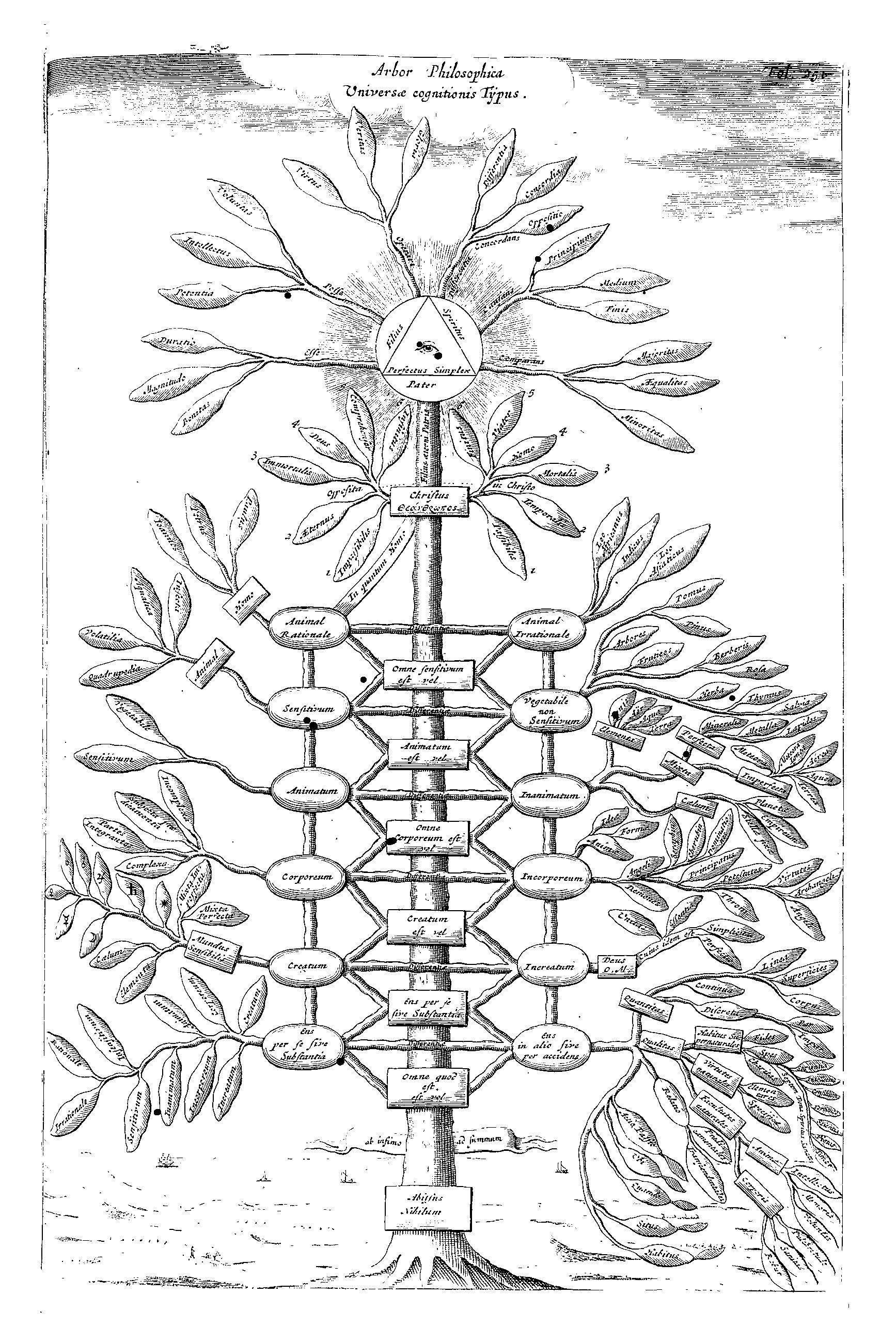 Kircher S Philosophical Tree Representing All Branches Of