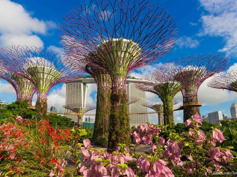 The Gardens By The Bay Were Built To Capture The Essence Of Singapore As A City In A Garden And Provided By Gobankingrates Arkitektur Arkitektur Hus