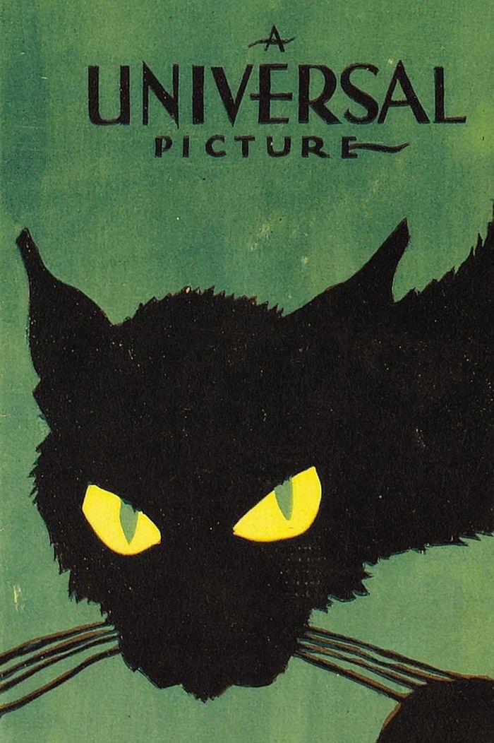 anantoinetteaffair:     Poster art for 'The Black Cat' (1934)