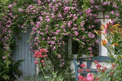 Mit diesen 10 Ideen verwandelst Du Deinen Garten in einen Cottage Gart