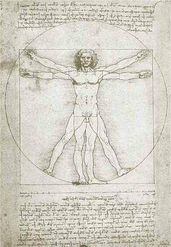 Leonardo Da Vinci Studied The Flower Of LifeS Form And Its