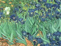 Trademark Art - Irises by Vincent van Gogh - Green/Purple, BL0317-C2632GG