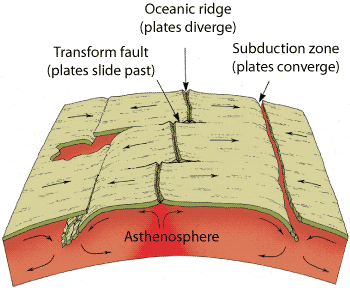 Divergent Plate Boundary Where Seafloors Separate Plate Boundaries Subduction Zone Seafloor Spreading