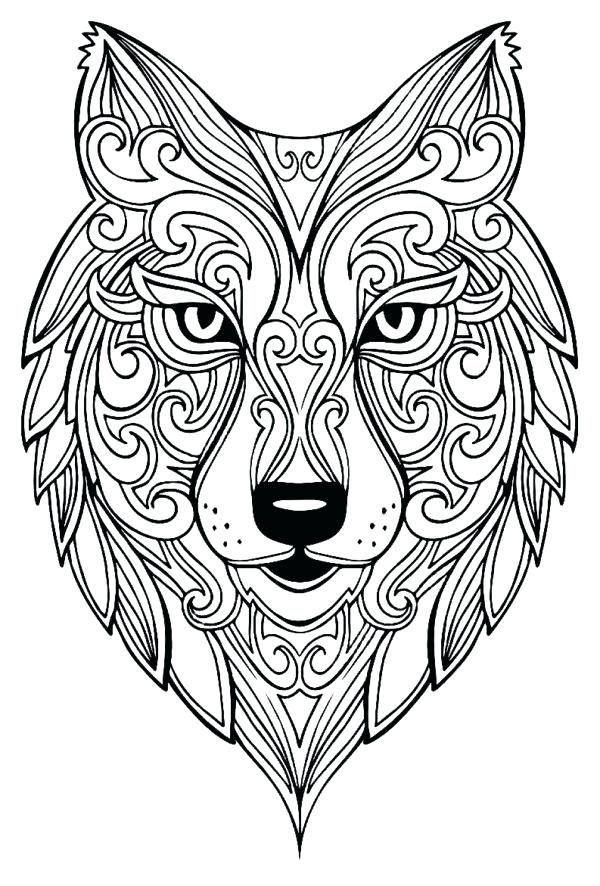 Image Result For Desenhos Para Colorir Mandalas De Animais