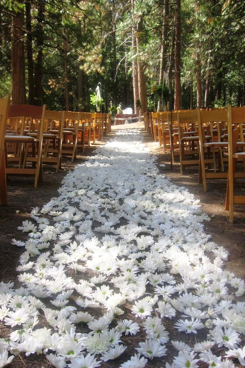 Evergreen Lodge Weddings | Get Prices for Yosemite Wedding Venues ...