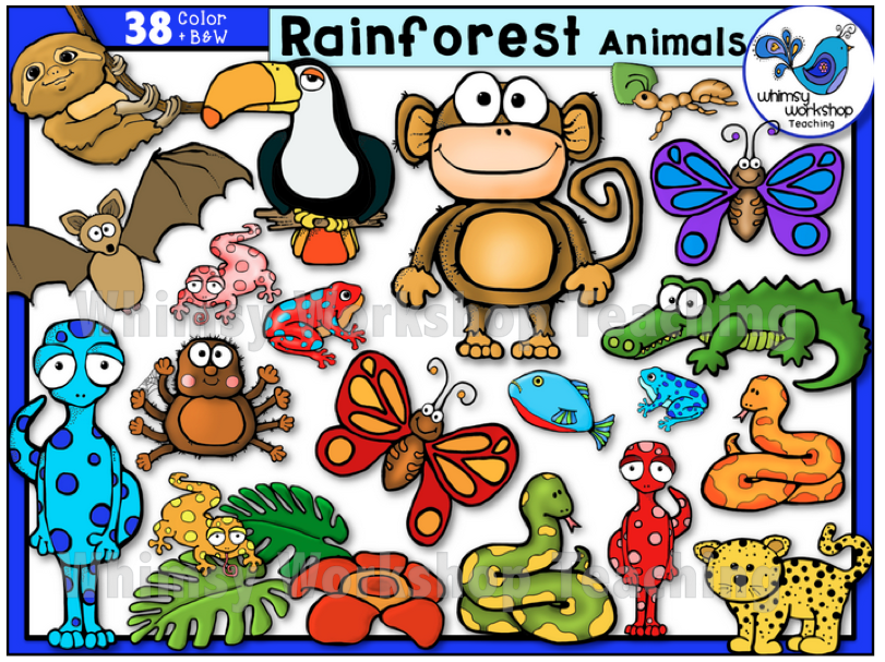 Whimsy Workshop Teaching Teacher Graphics Rainforest Animals Clip Art Art Bundle