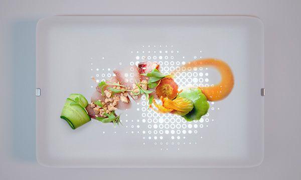 Illuminated Dinner Plates Dishes Dinner Plates Dog Treat Recipes