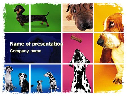 http://www.pptstar/powerpoint/template/dog-breed/ dog breed, Modern powerpoint