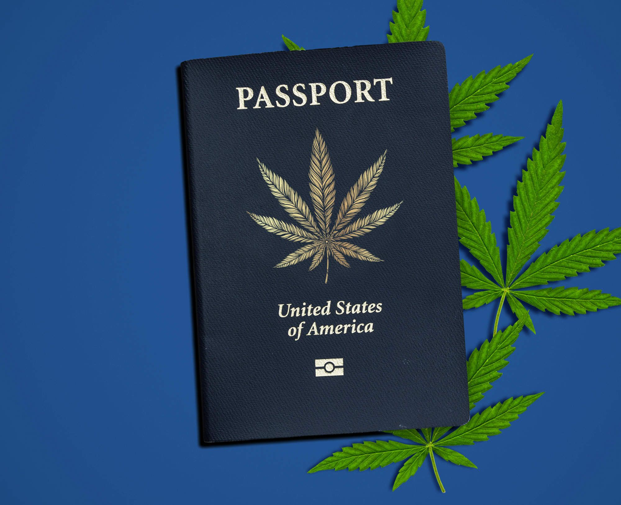 The Dos and Don'ts of Pot Tourism in America
