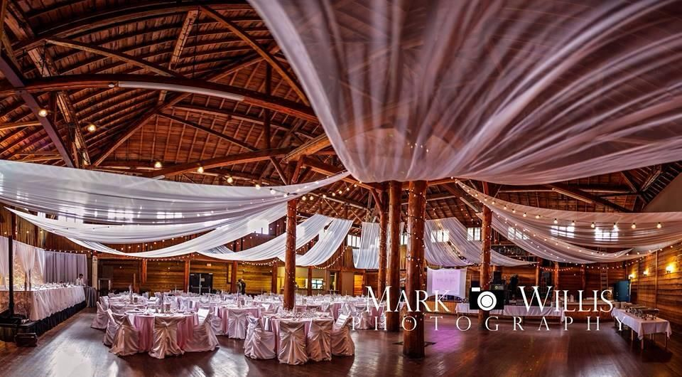 Danceland Clear Lake Pink White And Silver Wedding Ceiling Decor Bistro Lights A Whole Lot Of Pretty