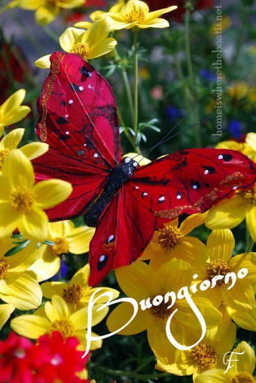 http://ift.tt/2vMQPrP Frasi di buongiorno sms di buongiorno messaggi di buongiorno buongiorno per te bongiorno per whatsa