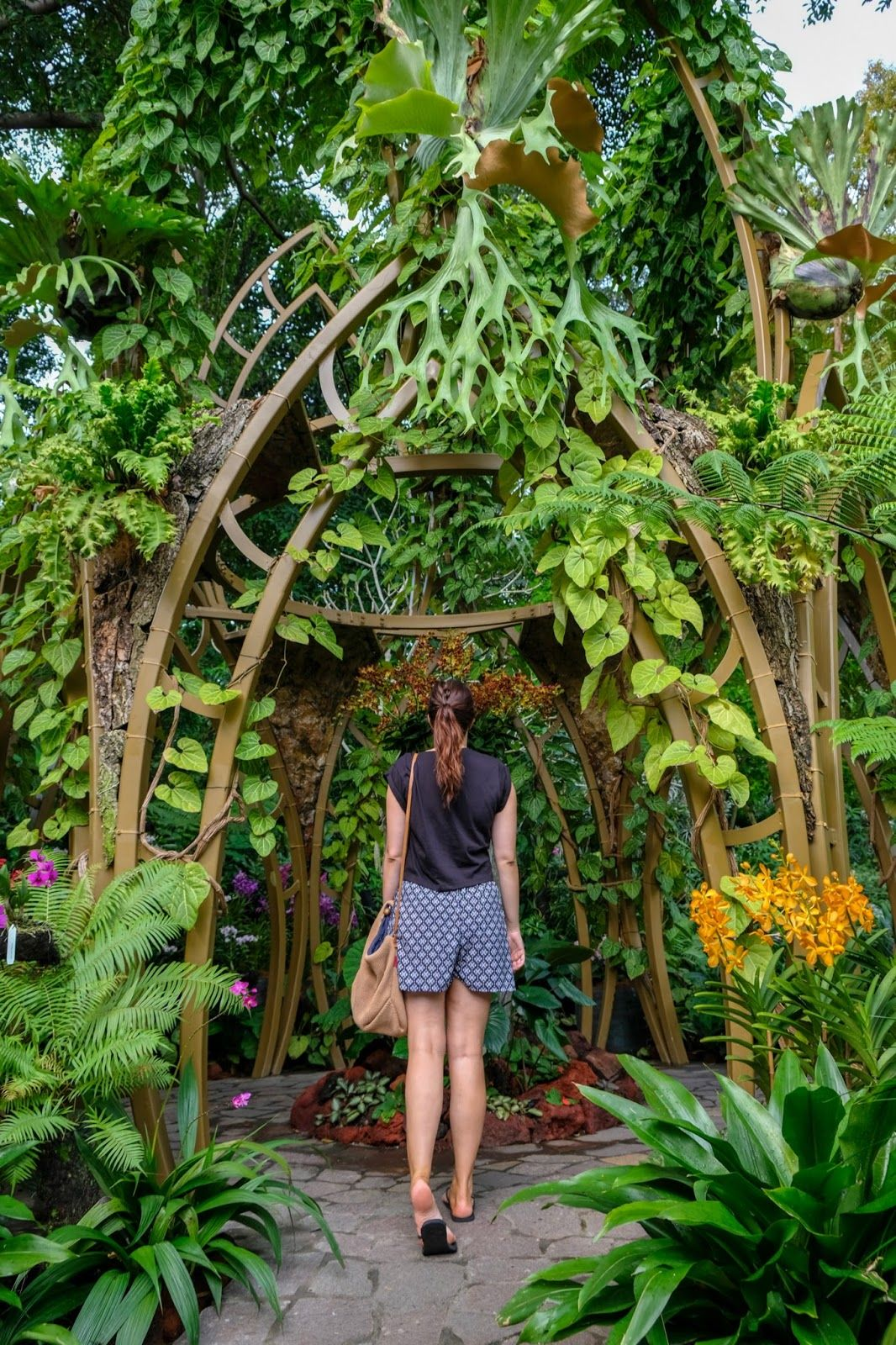 8 Places To Spend The Day In Singapore Singapore Itinerary Singapore Garden Singapore