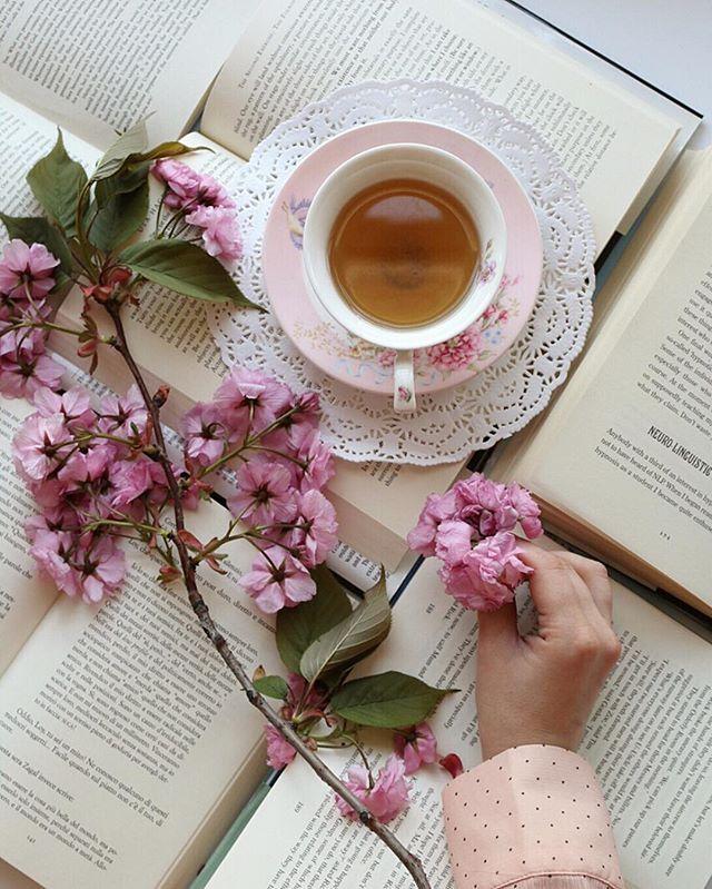 красивые картинки книги с чаем арка