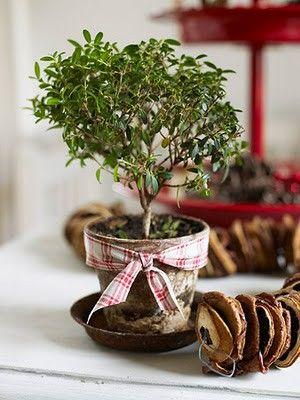 Christmas 'tree' :)