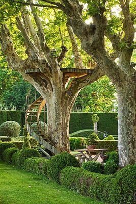 cabane en provence - cabane dans un platane | Jardin | Pinterest ...