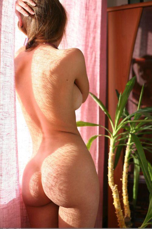 Ass boob butt window