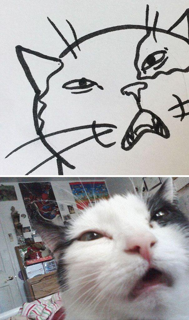 Poorly Drawn Cat Stupid cat, Cat drawing, Drawings