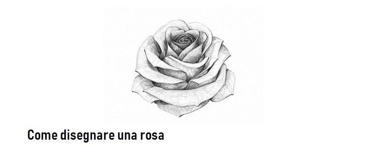 Disegno Di Una Rosa