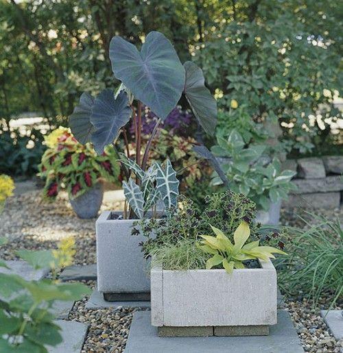 DIY Concrete Planters Flores en maceta Pinterest Jardinería