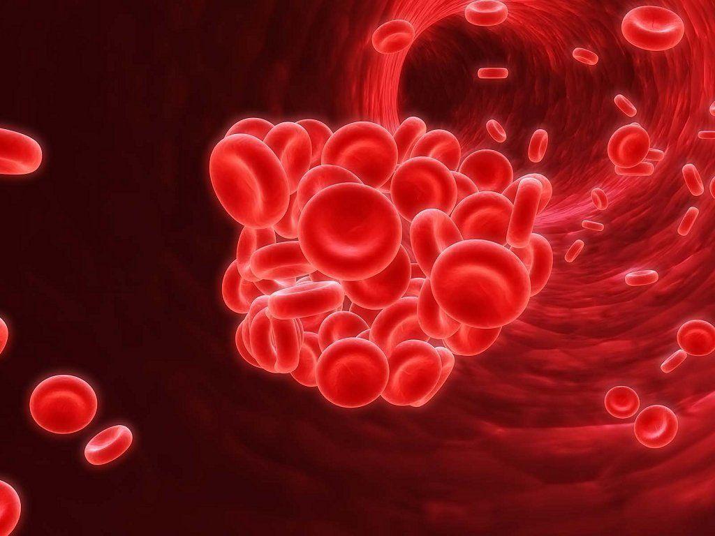 Dieta para anemia profunda