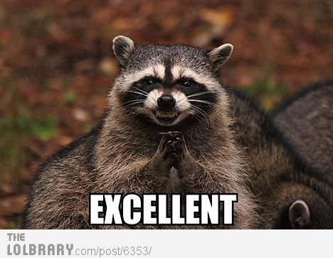 Bond Villain Raccoon   raccoon   Mama jokes, Funny animals ...