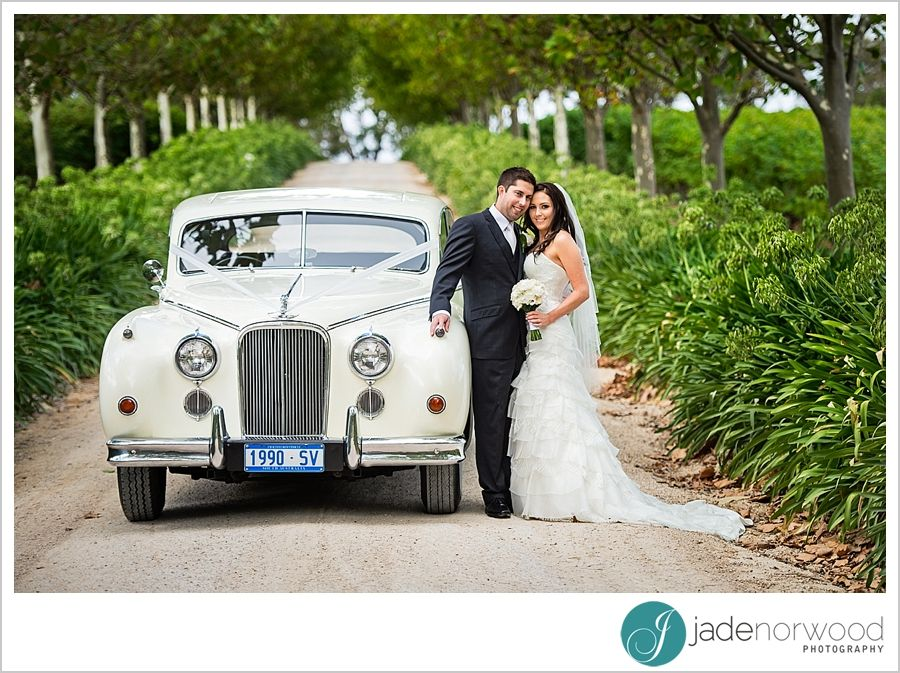 Old wedding cars look great for this wedding at a winery venue in ...