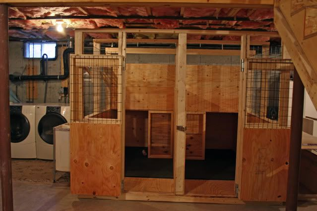 Indoor dog kennel run page 2 german shepherd dog for Indoor outdoor dog kennel design