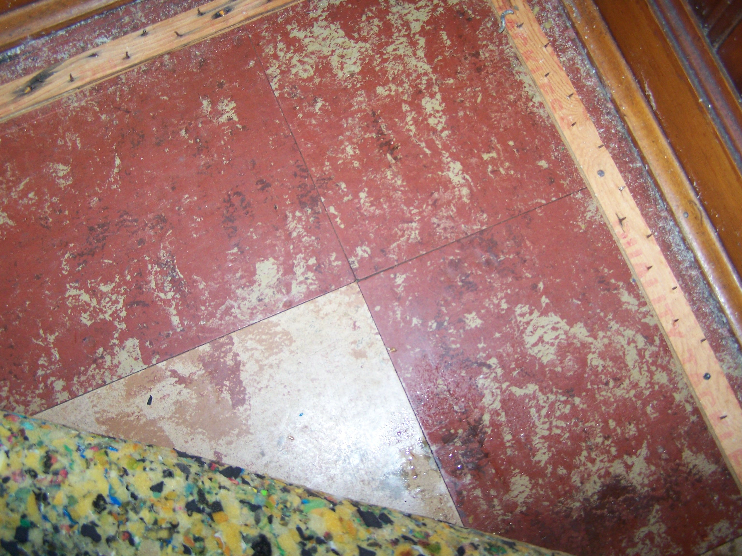 312 850 9010 Asbestos Floor Tile Removal Chicago Company Abatement Sample Analysis Inspections Surveys Testing Mold And Lead Prof Tile Removal Molding Asbestos