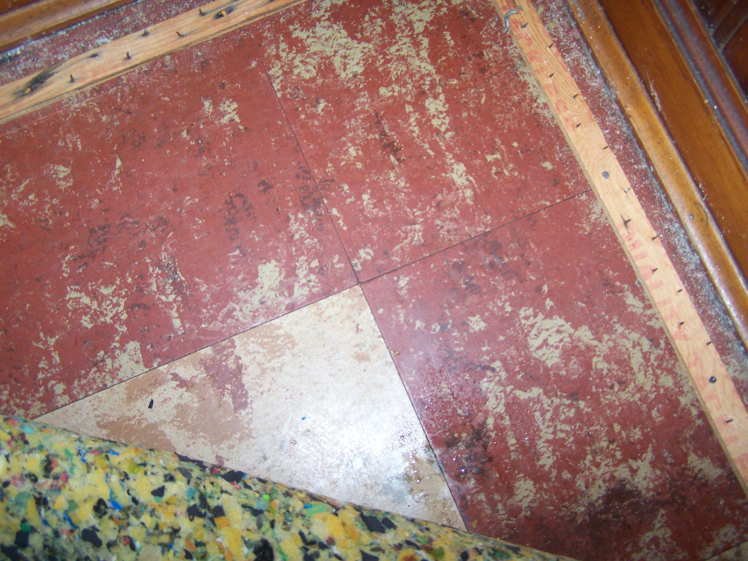 312 850 9010 Asbestos Floor Tile Removal Chicago Company