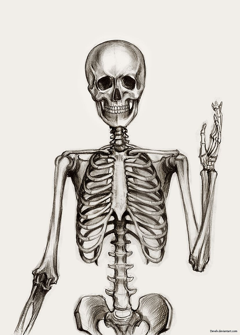 Uncategorized Skeletons Drawings skeleton drawing google zoeken art for school pinterest zoeken