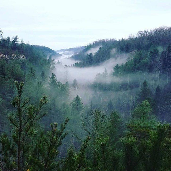 Kentucky is killing it these days. #treehousevillage #redrivergorge #canopycrew #explorekentucky #redrivergorgeous @redrivergorgeky