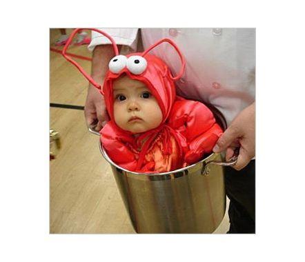 up halloween costume baby