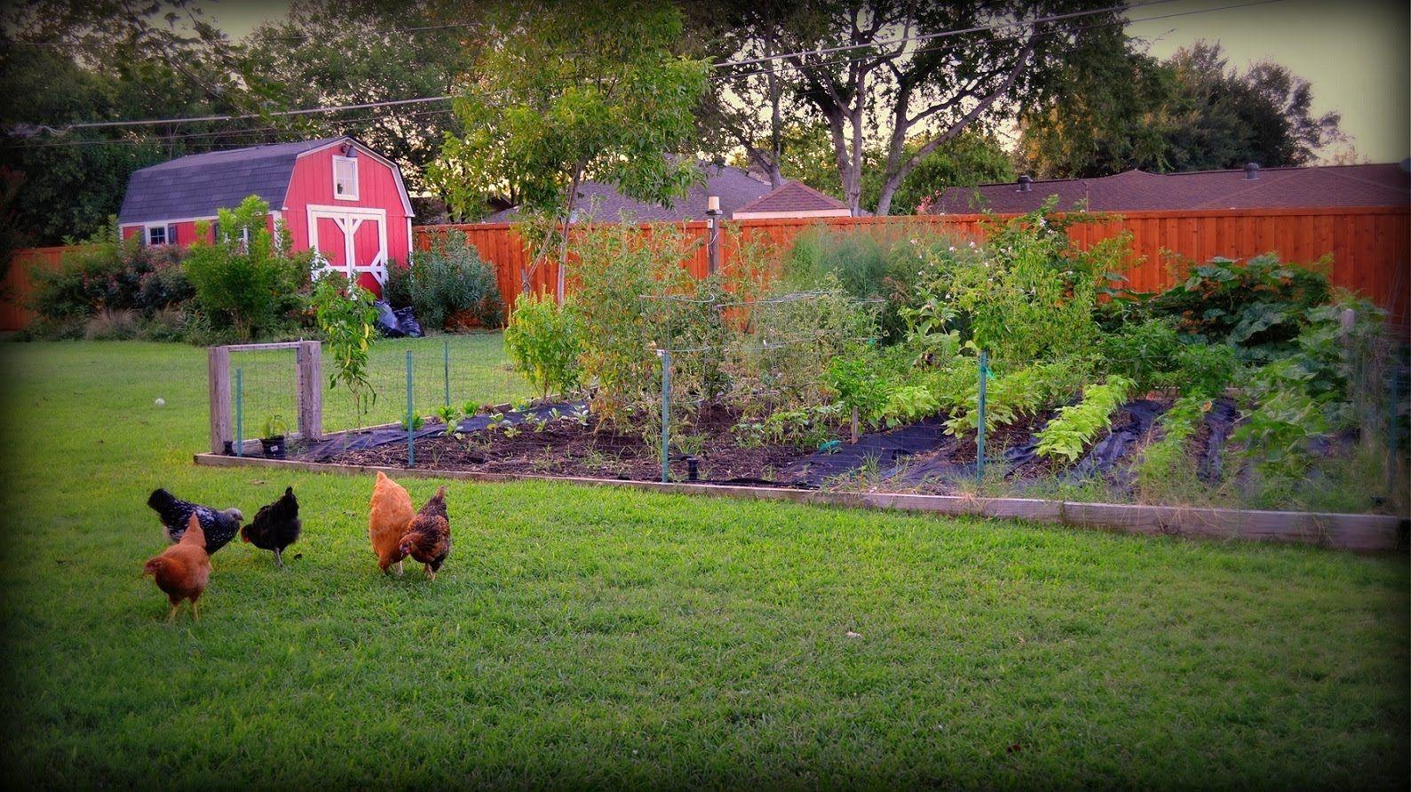 Vegetable Garden Time For Fall Gardening Fall Garden Vegetables Fall Vegetables Vegetable Garden