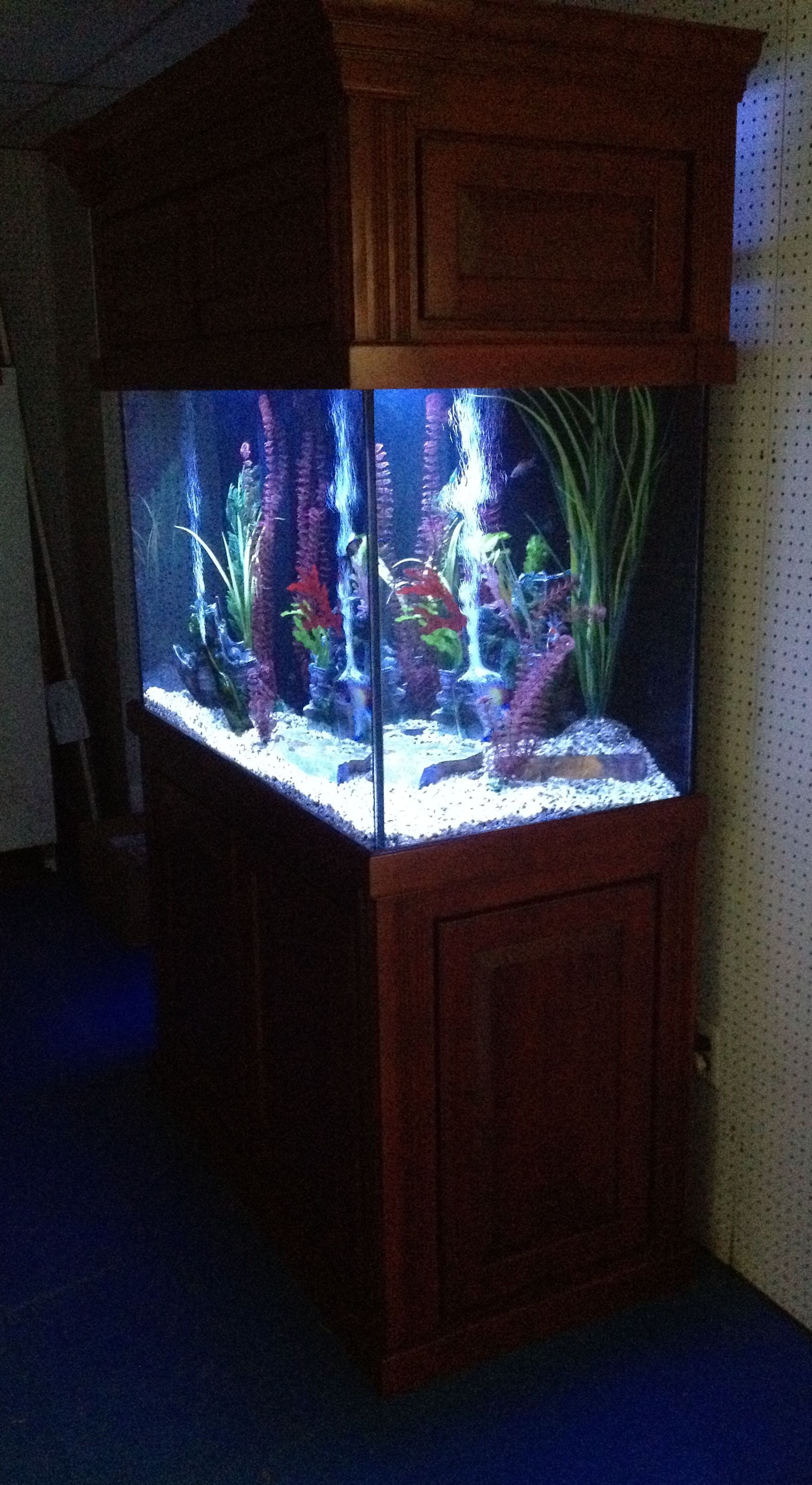 150 Gallon Super Show Mediterranean Ultimate Aquarium Package In Cherry Wood Aquarium Cherry Wood Wood