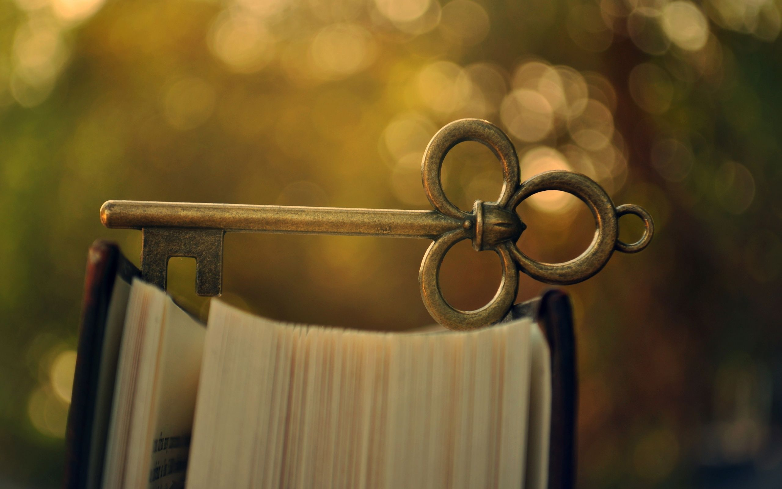 Pin About Book Background Hd Wallpaper Vintage And Book