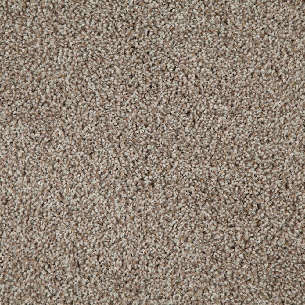 Trafficmaster Americana Color Sedona Texture 12 Ft Carpet 0665d 21 12 The Home Depot Carpet Samples Carpet Tiles Buying Carpet