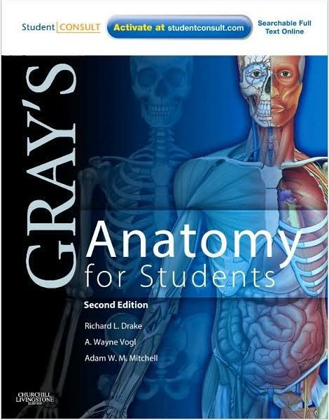 Grays Anatomy For Students 2009 Chm Medicine Pinterest
