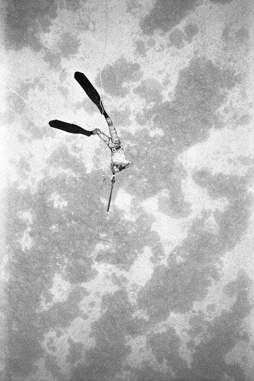 Free Dive By Kanoa Zimmerman