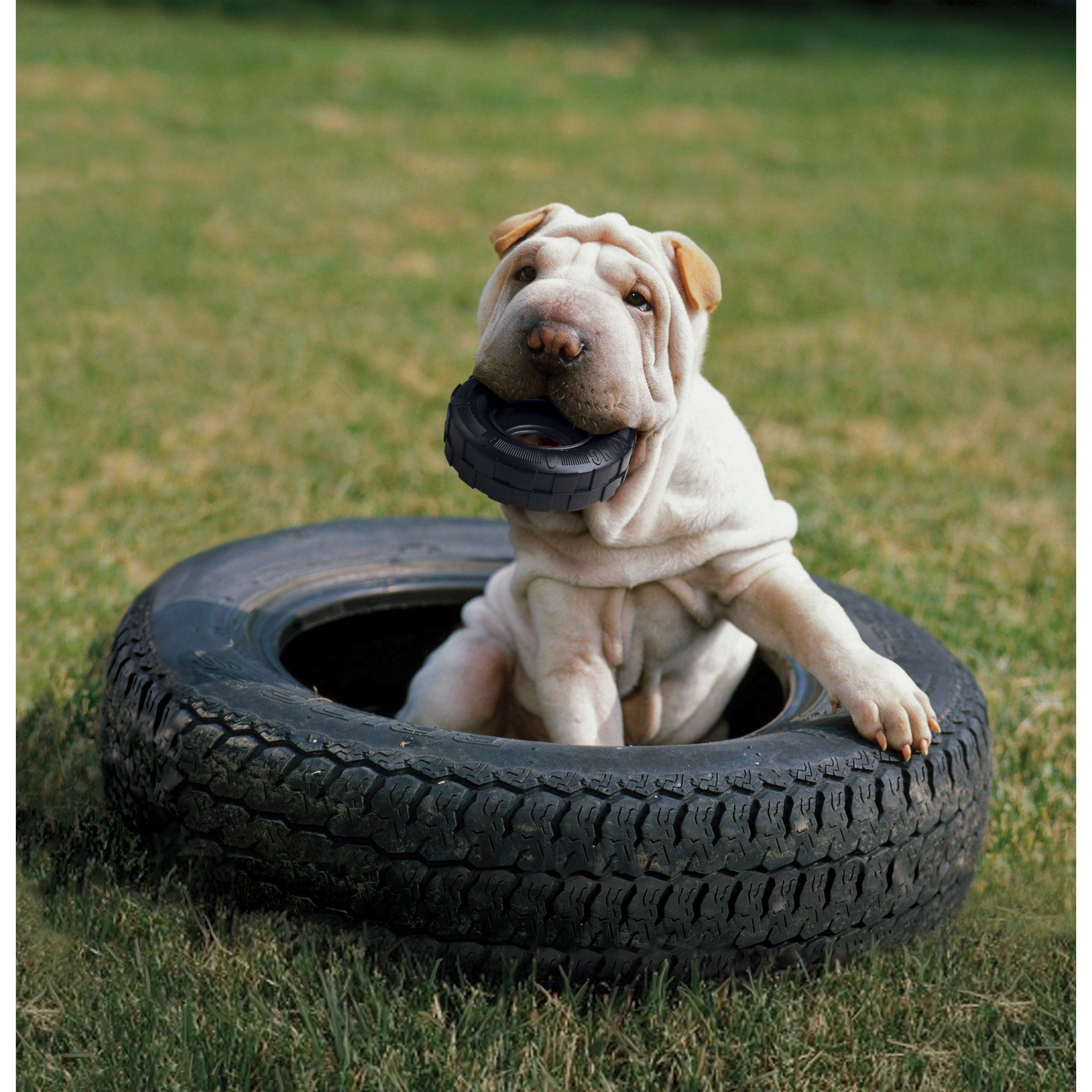 Kong Traxx Tire Dog Toy Small Black Best Dog Toys Outdoor Dog