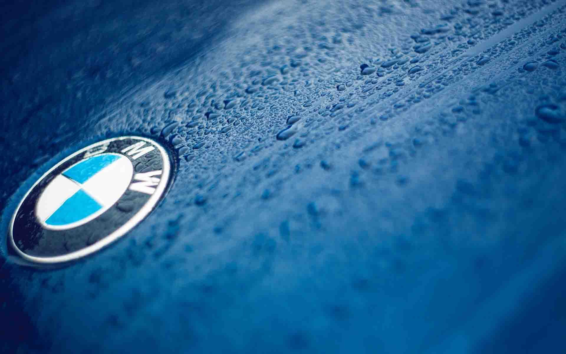 Bmw Logo On Wet Car Wallpaper Bmw Logo Popular Logos Bmw