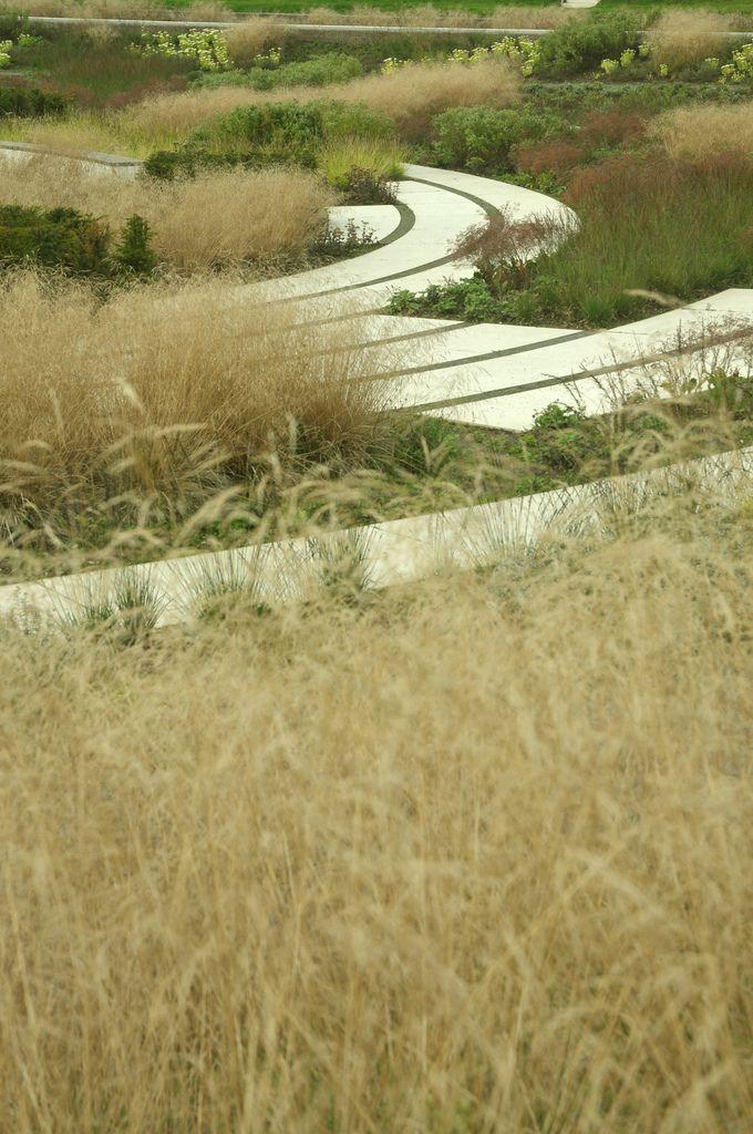 Piet Oudolf Border | Modern landscape design front yard ...