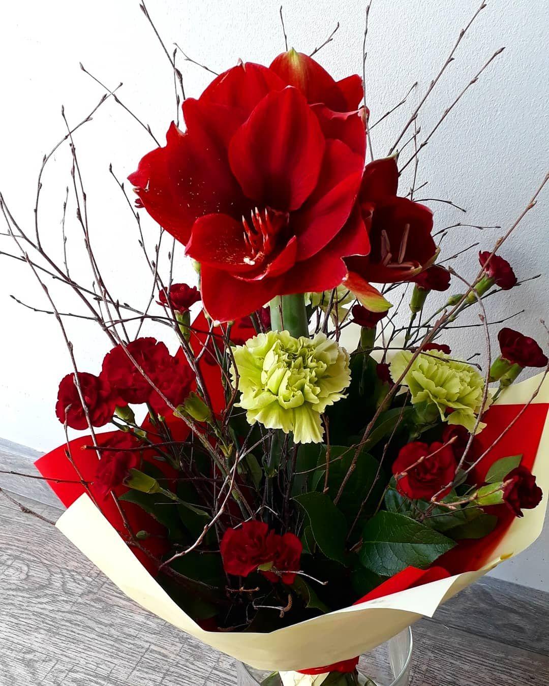 Bukiet Amarylis Gozdziki Flowers Plants
