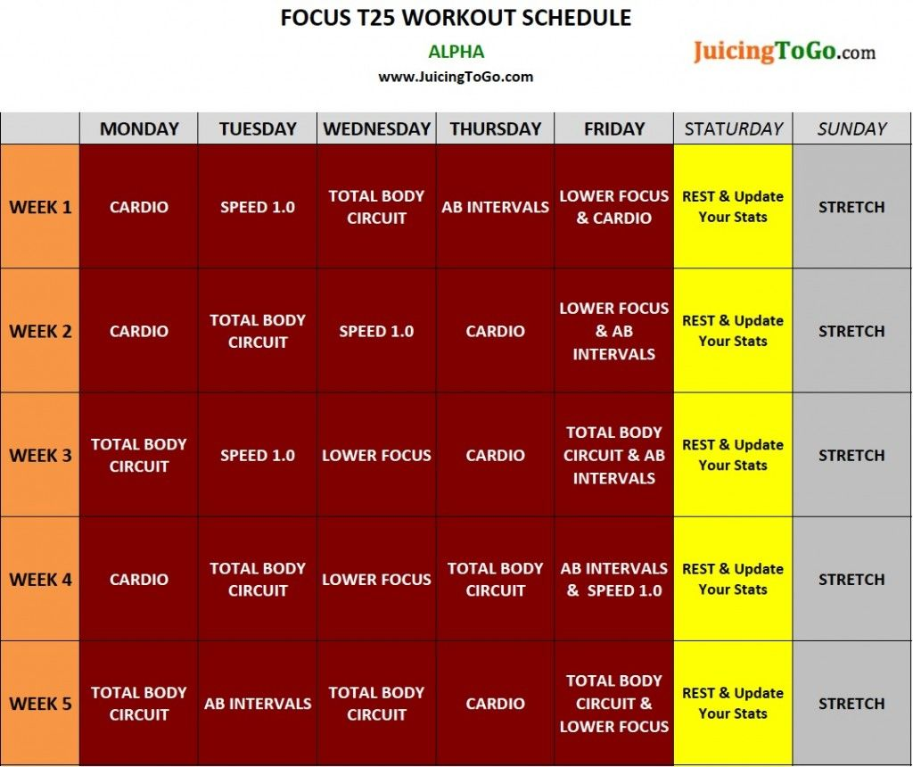 focus t25 schedule"