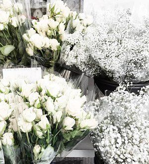 Stopping for pretty blooms while strolling the streets of the city this weekend