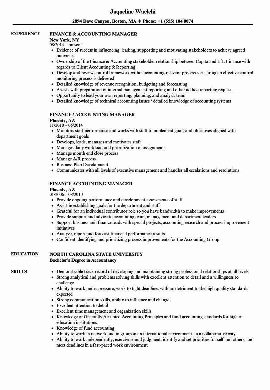 Account Manager Resume Examples Fresh 10 It Department