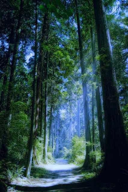 ZOOM FRASES: paisajes que inspiran paz y armonia